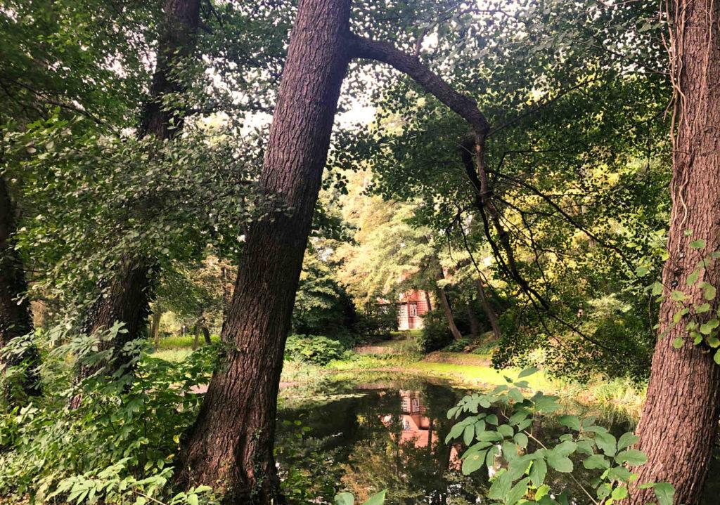Makler Wilhelmshorst - Irissteig am Irissee