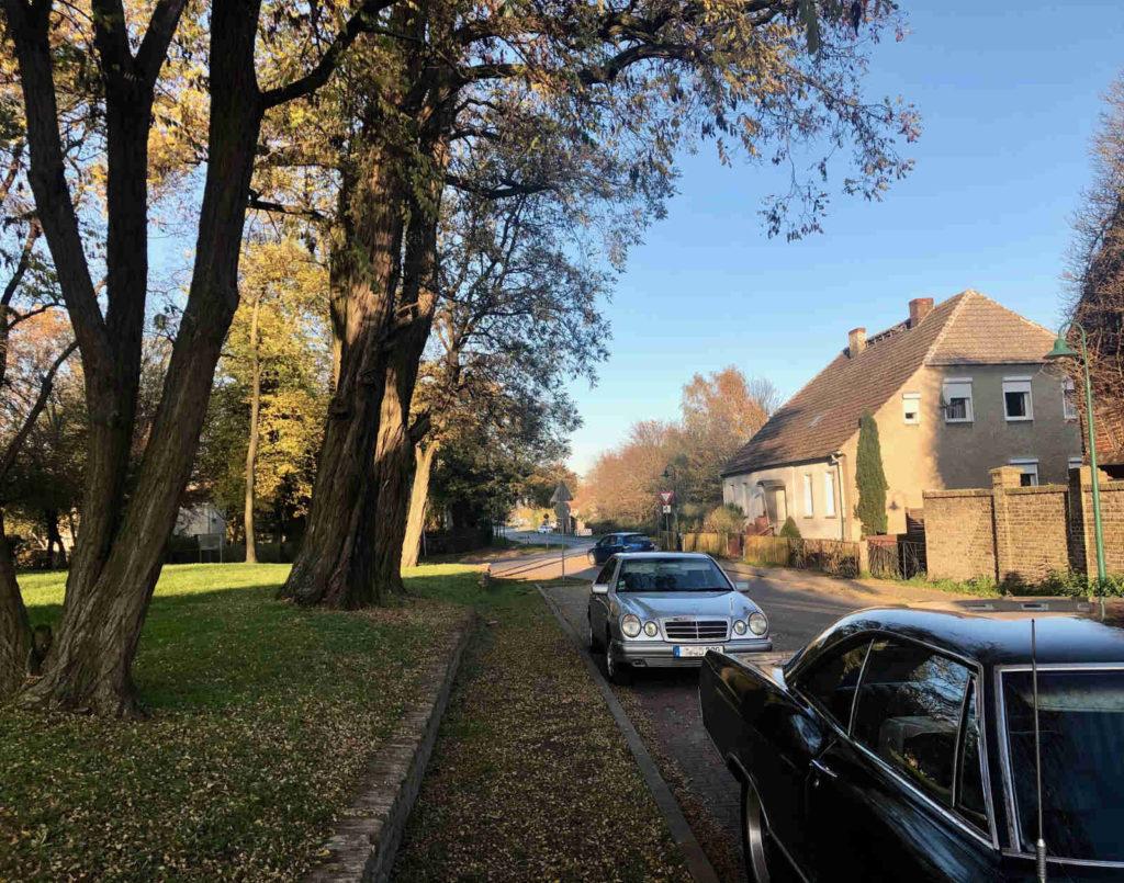Makler Brieselang 14656: Immobilien in der Ringstrasse in Bredow