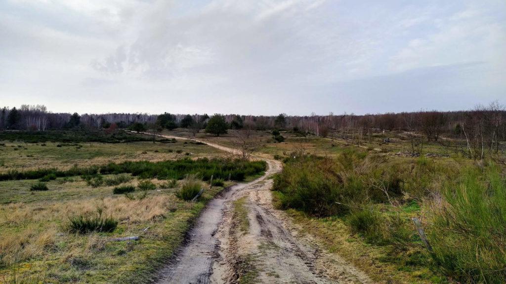 Makler Elstal 14641: Döberitzer Heide