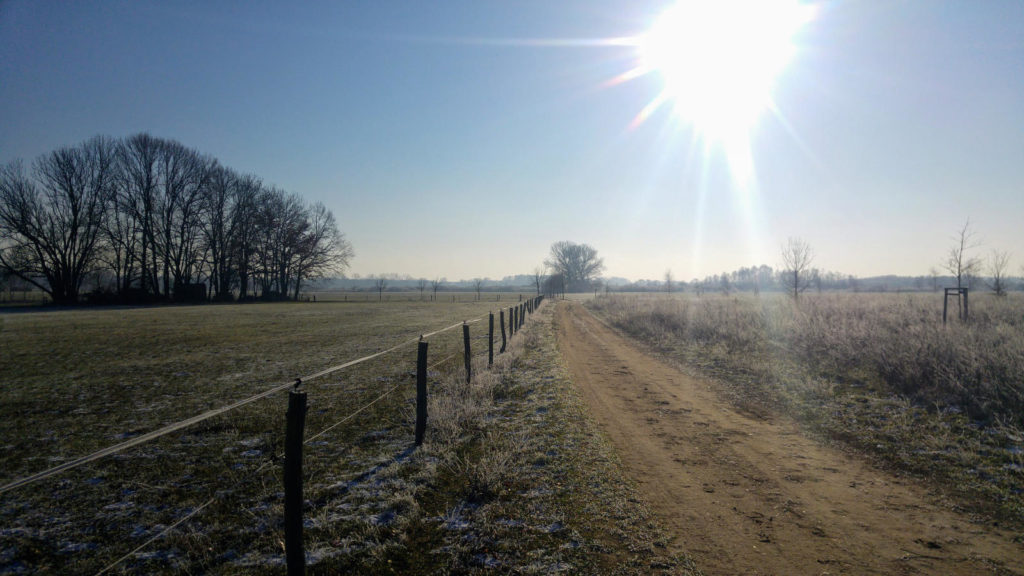 Makler Baruth/Mark 15837: winterliche Landschaft Baruth