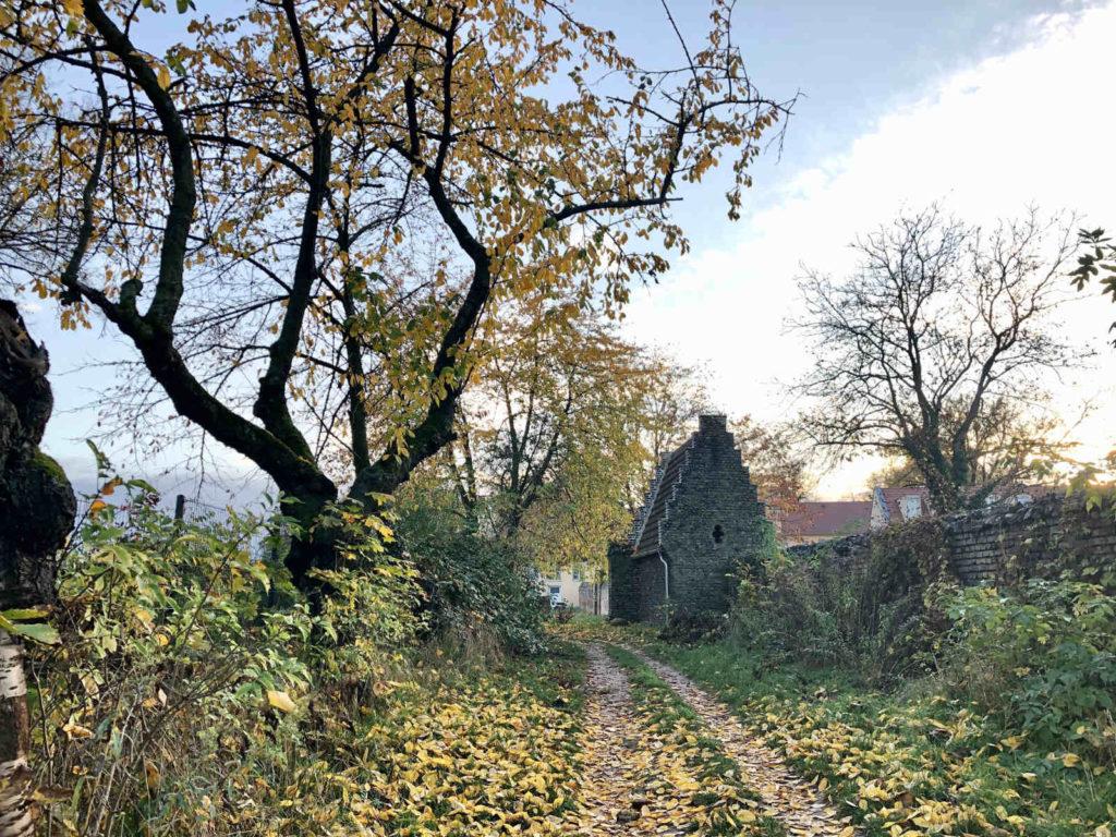 Makler Petzow - Der Fontaneweg