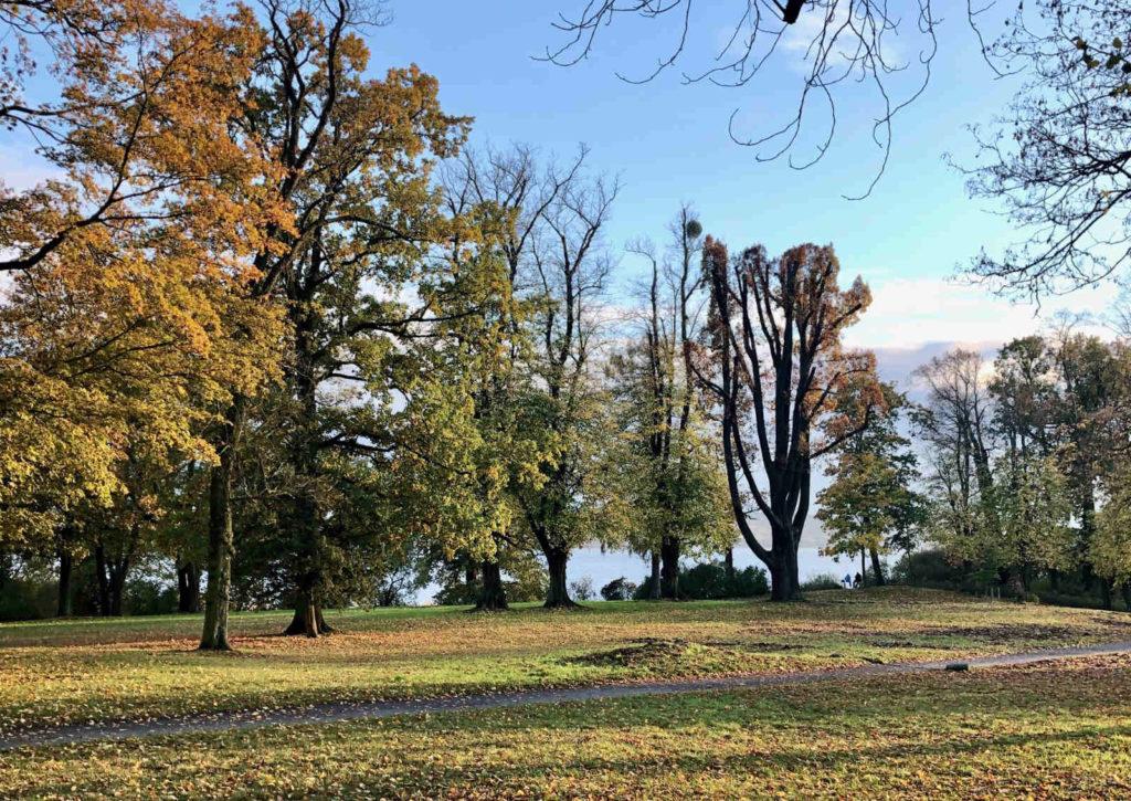 Makler Petzow - Lenné-Park