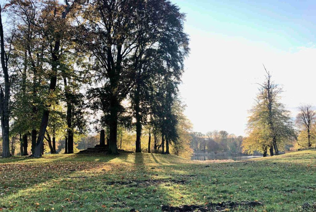 Makler Petzow - Der Haussee im Lenné-Park