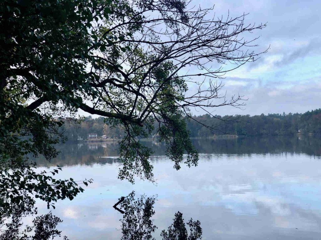 Makler Summt: Die Seepromenade am Summter See