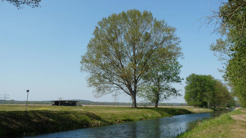 Makler Teltow-Fläming TF - Nuthe Kanal Trebbin
