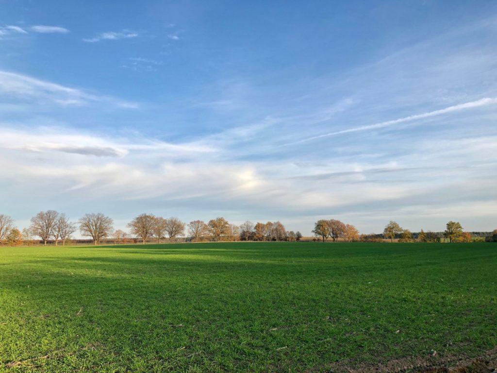Makler Trechwitz: Die Landschaft zwischen Schenkenberg und Trechwitz