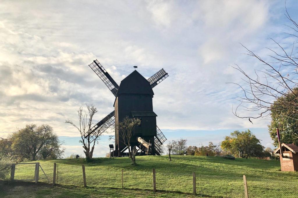 Makler Werder - die historische Bockwindmühle am Mühlenberg