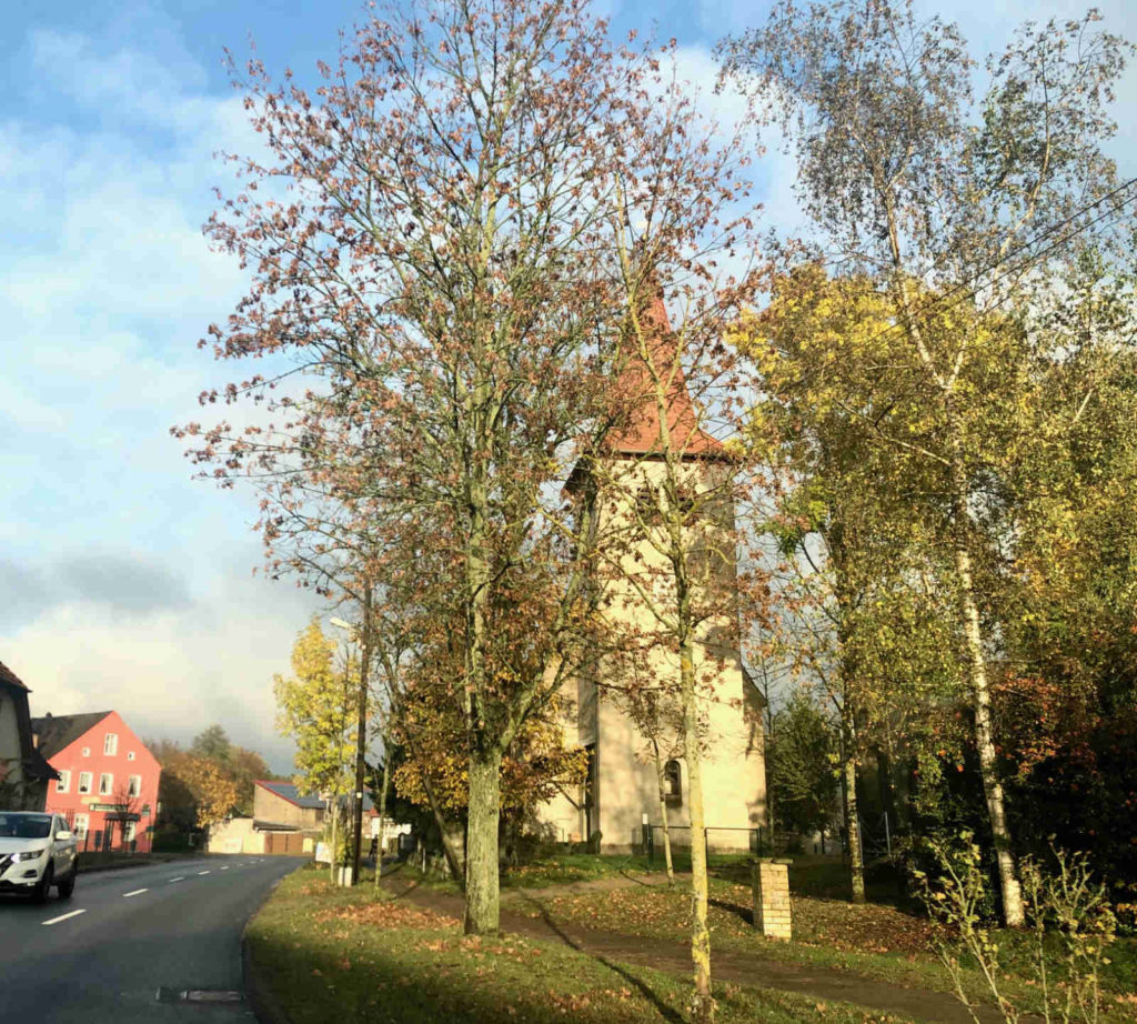 Makler Zühlsdorf: Kirche an der Dorfstrasse