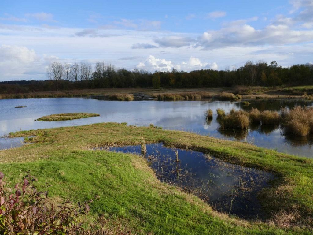 Makler Ludwigsfelde - Biospärenreservat