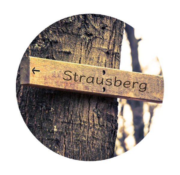 Makler Strausberg 15344: Wegweiser