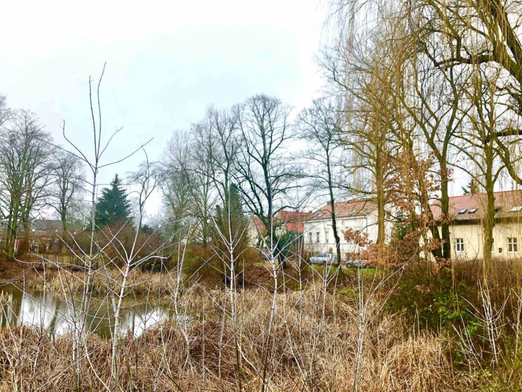 Makler Bohnsdorf: Dorfanger