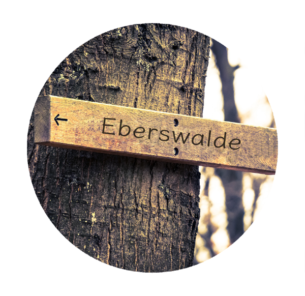 Makler Eberswalde 16225 - Wegweiser