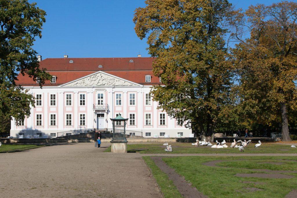 Makler Friedrichsfelde: Schloß