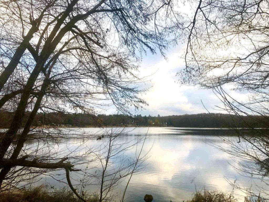 Makler Groß Glienicke - See