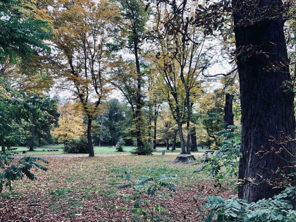 Makler Niederschönhausen: Am Schlosspark