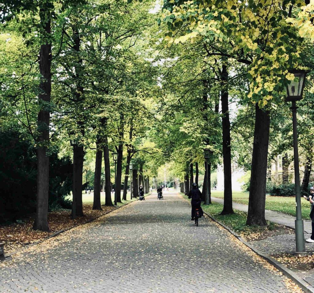 Makler Niederschönhausen: Weg im Schlosspark