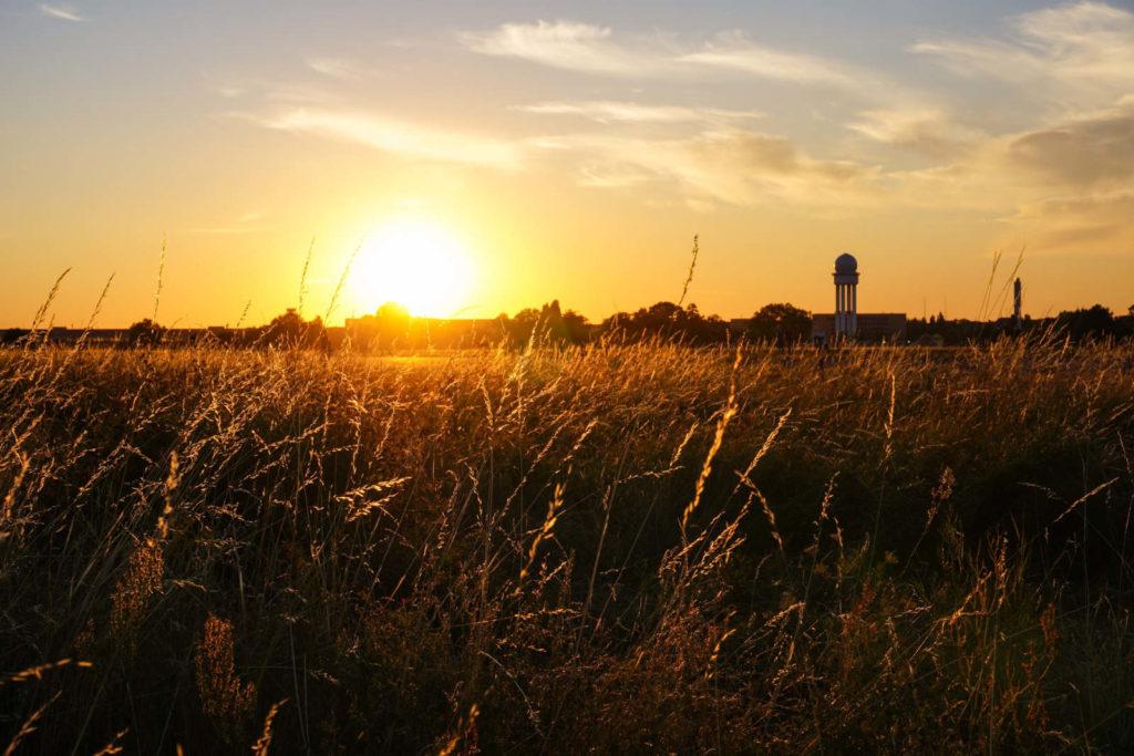 Makler Tempelhof: Tempelhofer Feld