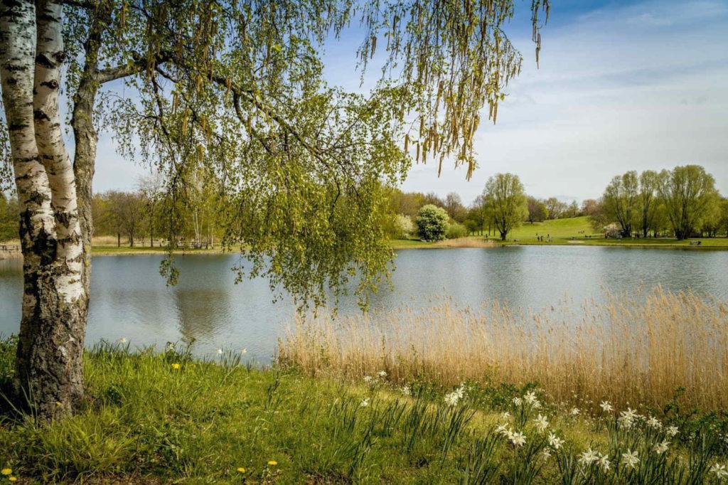 Makler Neukölln: Britzer Garten