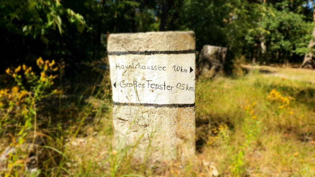 Makler Grunewald 14193: Meilenstein