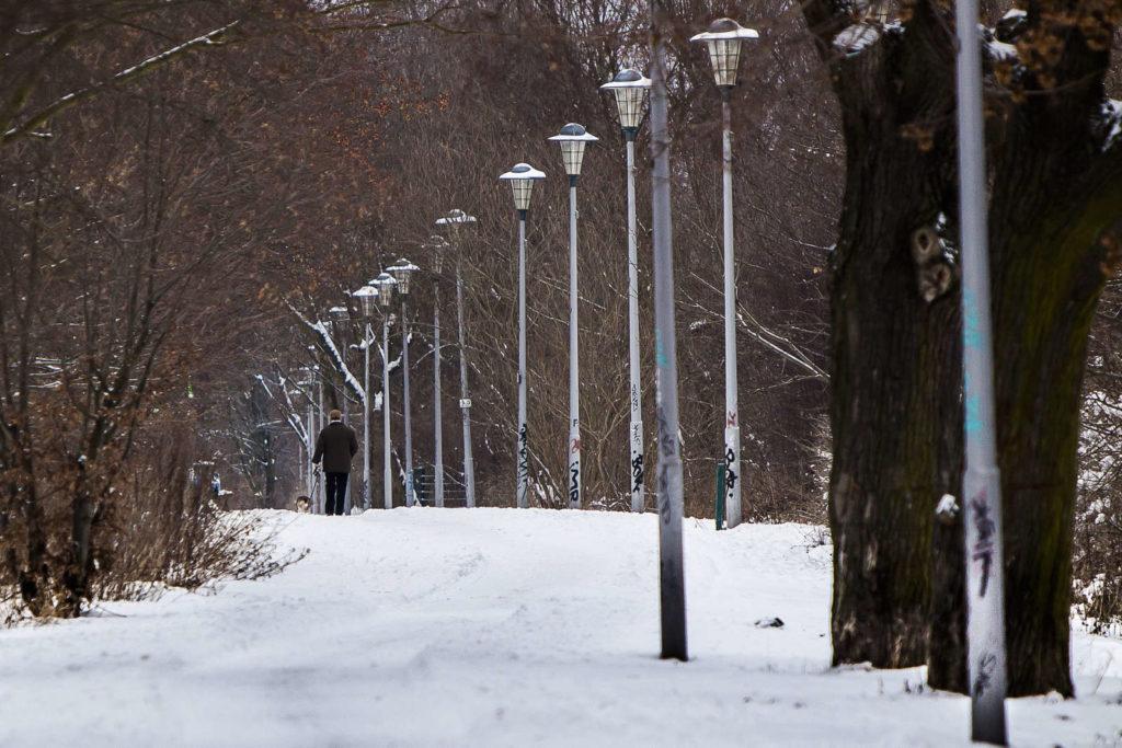 Makler Malchow: Park
