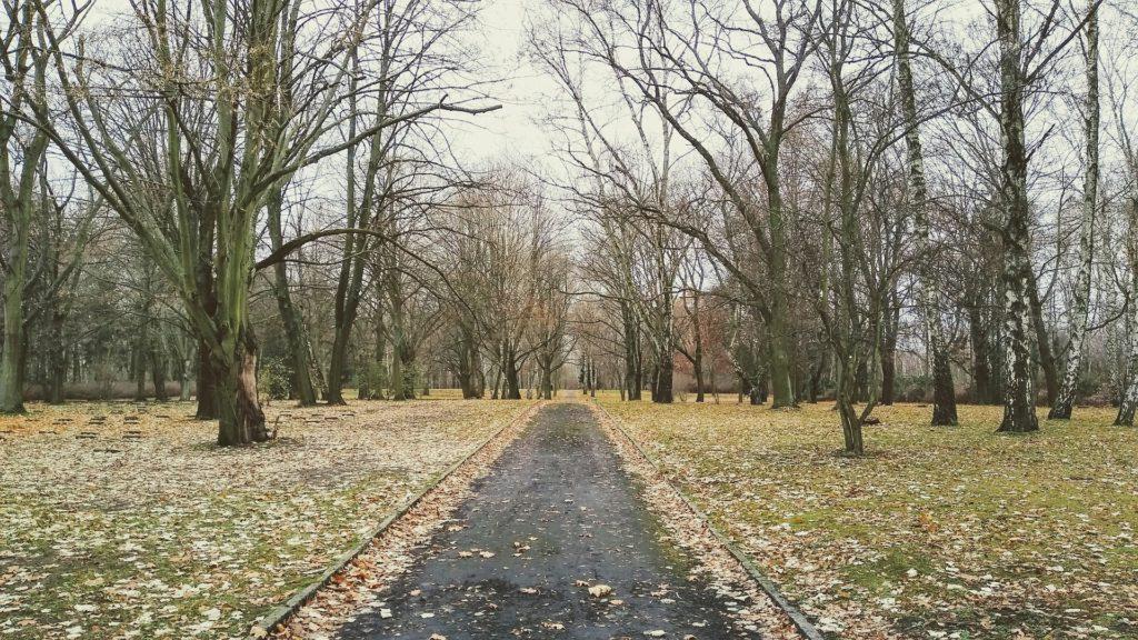 Makler Marzahn-Hellersdorf: Friedhof