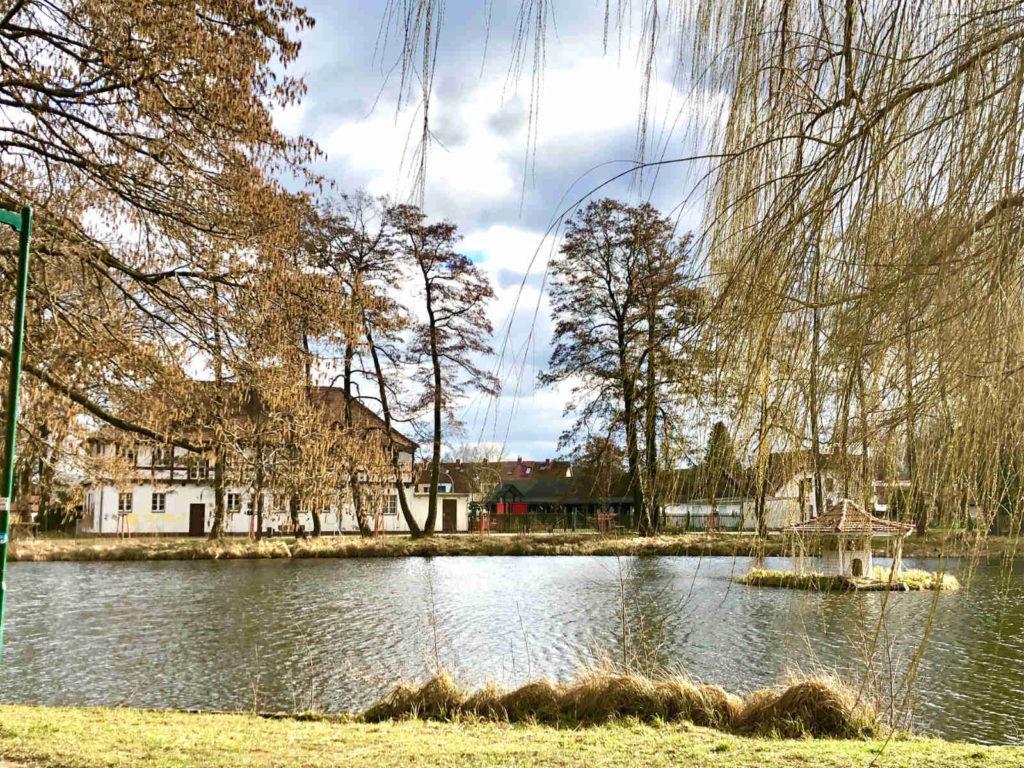 Makler Treuenbrietzen - Schwanenteich Stadtpark
