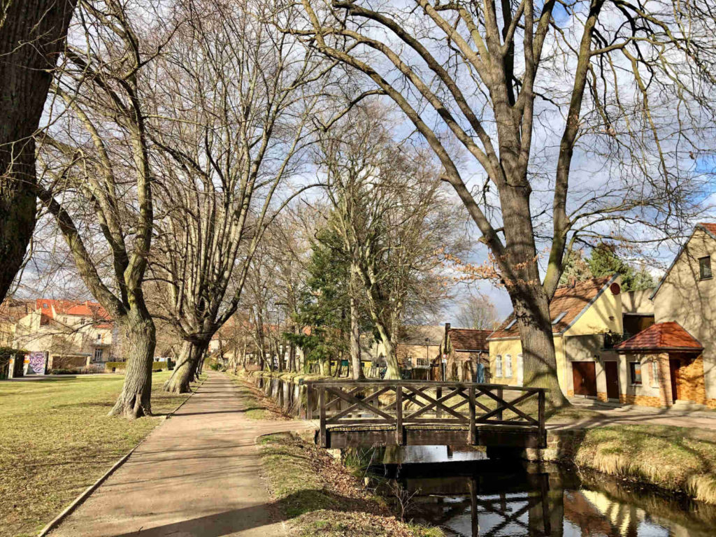 Makler Treuenbrietzen - Stadtpark