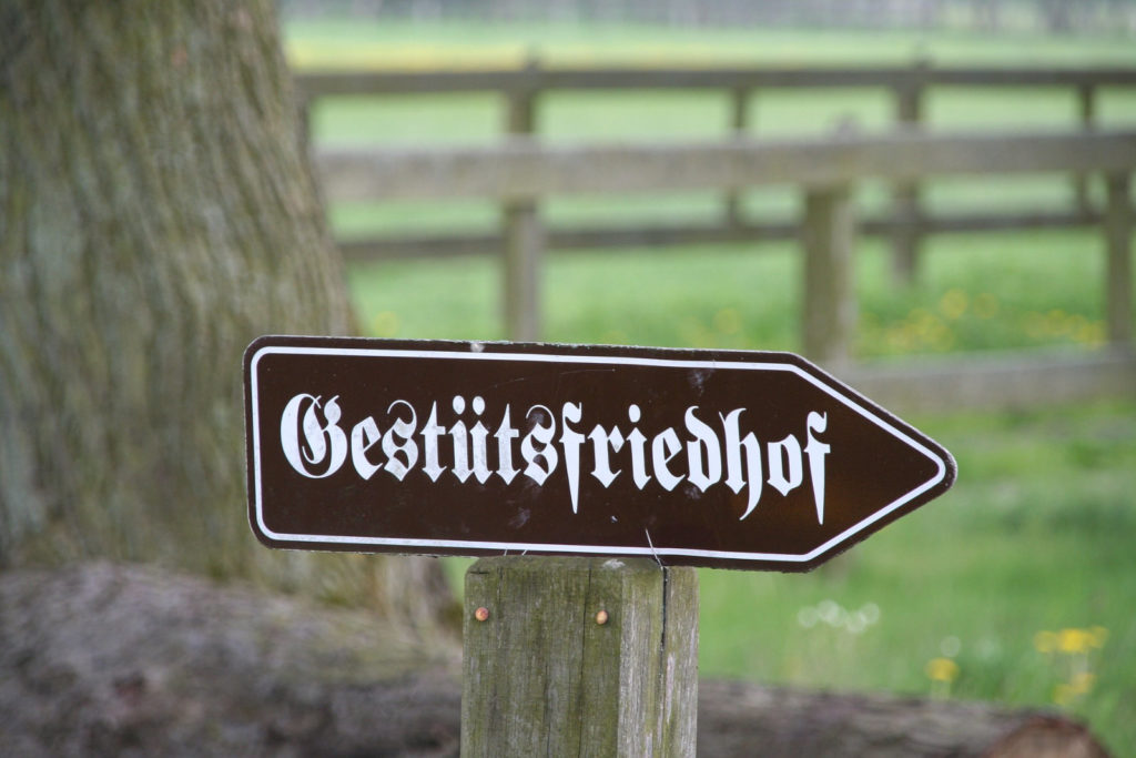 Makler Neustadt (Dosse) - Pferdefriedhof